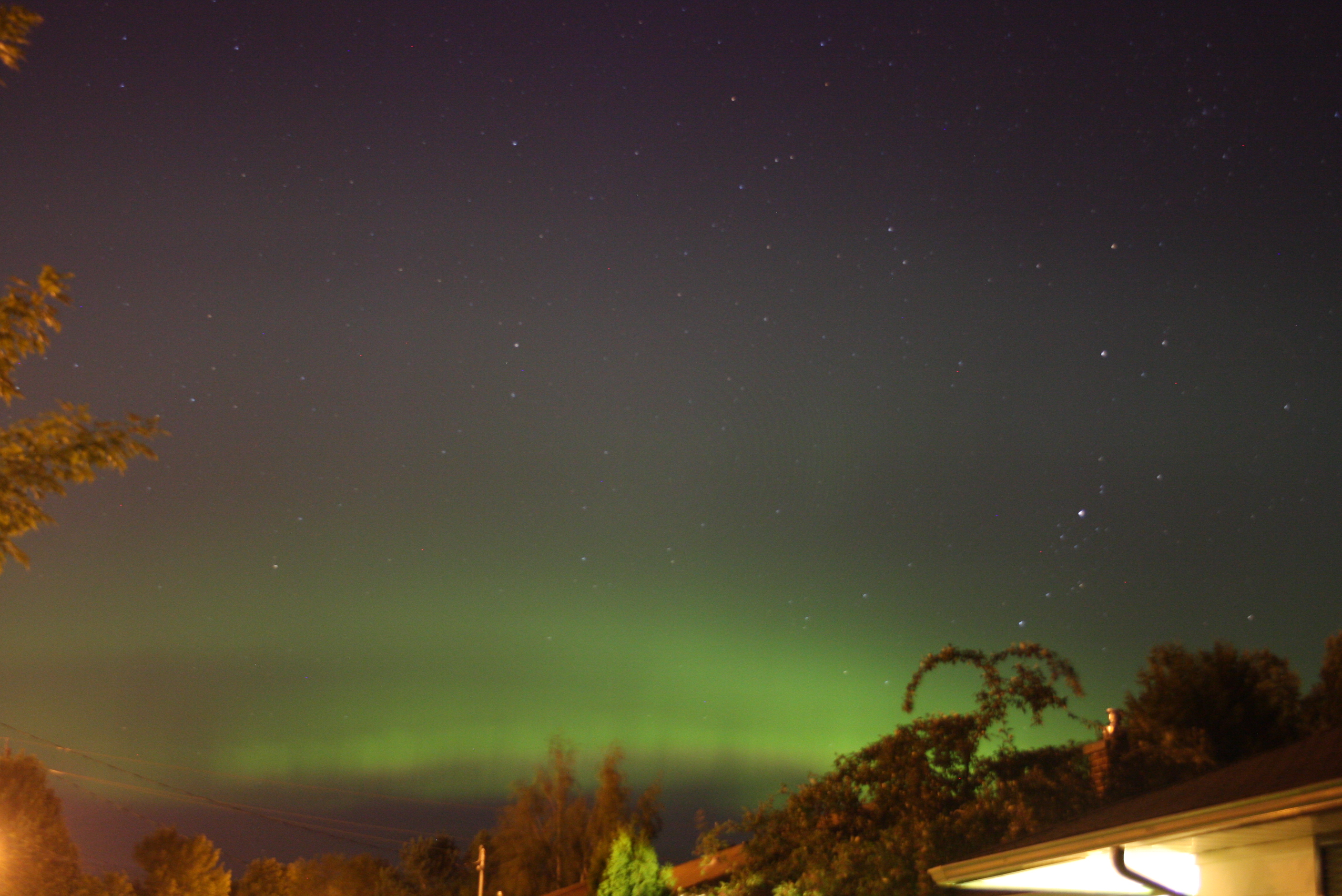 Northern Lights from my my front yard